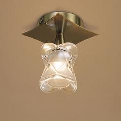 Потолочный светильник ROSA DEL DESIERTO 0247