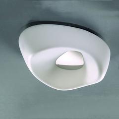 Потолочный светильник AMEBA 1334