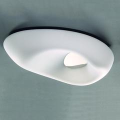 Потолочный светильник AMEBA 1335