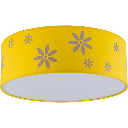 Потолочный светильник FLORA 2419
