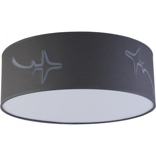 Потолочный светильник AVION 2421