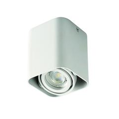 Светильник TOLEO DTL50-W