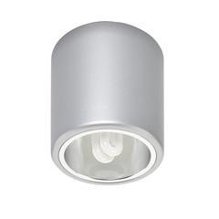 Светильник DOWNLIGHT 4868