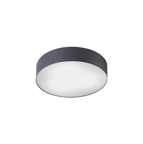 Потолочный светильник ARENA 8833